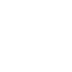 family-lifecycle-icon