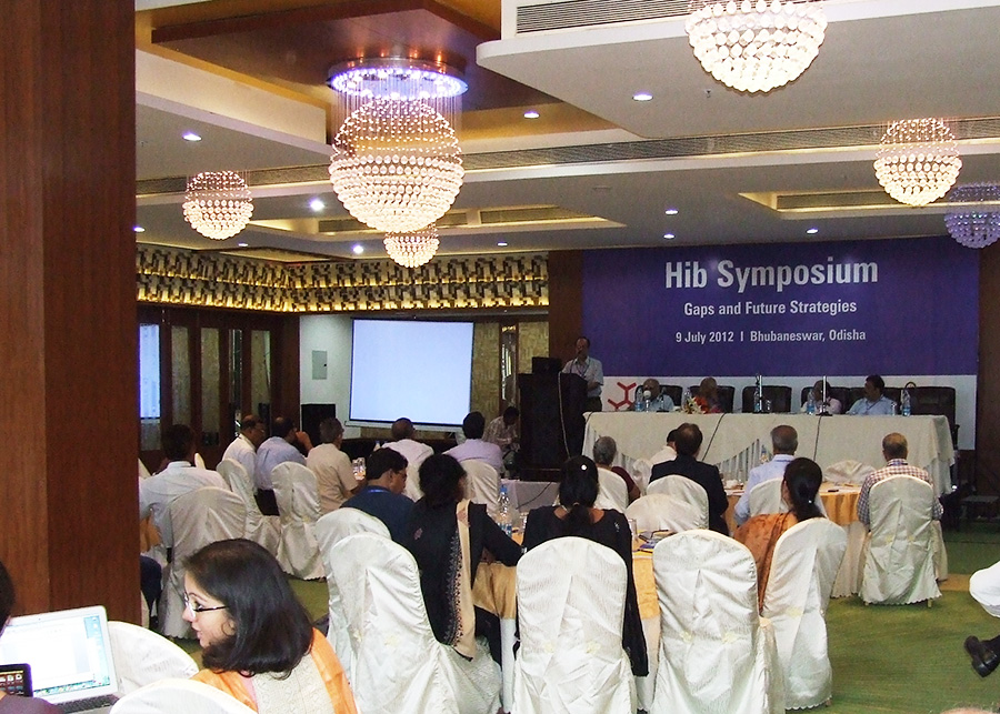 Meeting participants at the Hib Symposium