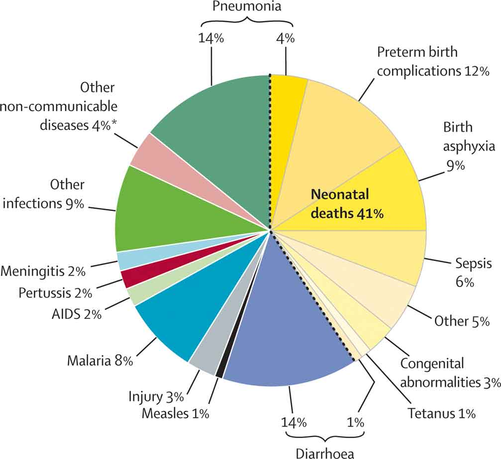 Global Causes of Death