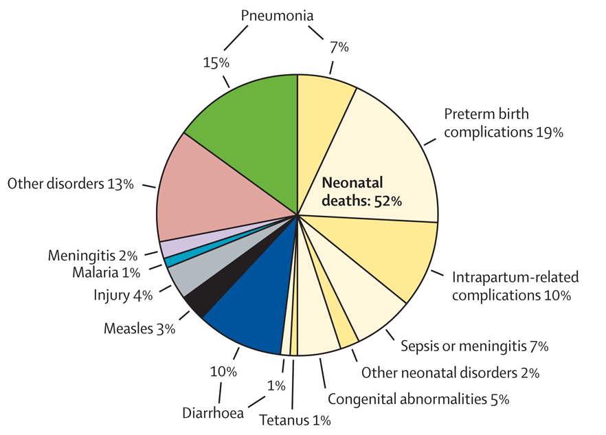 Causes Of Child Mortality Released By Cherg Summer 2012