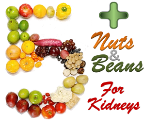 5 Plus Nuts and Beans for Kidneys Logo